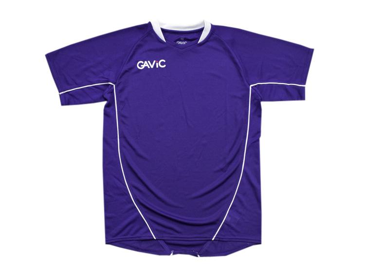 GAViC